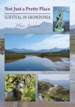 Not Just a Pretty Place - Survival in Snowdonia